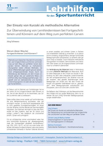 Der Einsatz von Kurzski als methodische Alternative